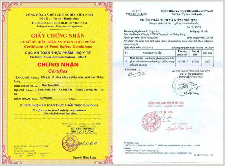 giấy chứng nhận cà gai leo