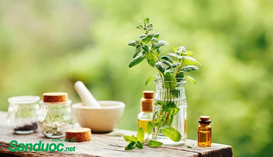 Cách chữa ho, cảm, sổ mũi cho trẻ bằng thảo dược!