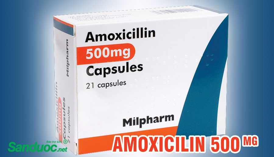 Thuốc amoxicillin!